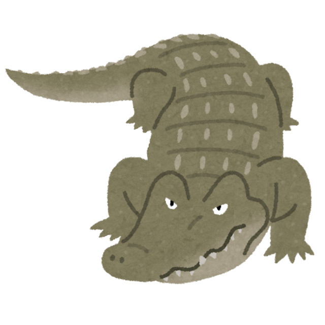 animal_crocodile_wani.png