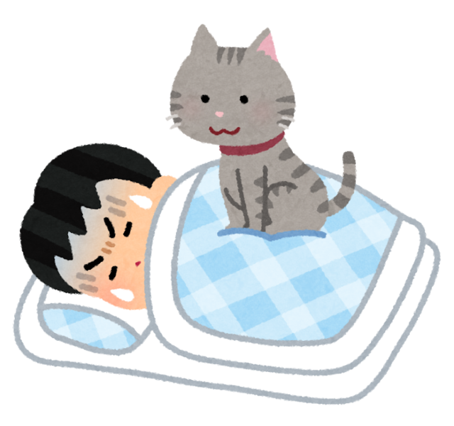 pet_cat_omoi_sleep_man.png